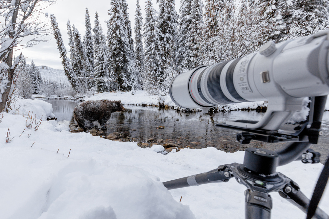 Fishing Branch photography set-up