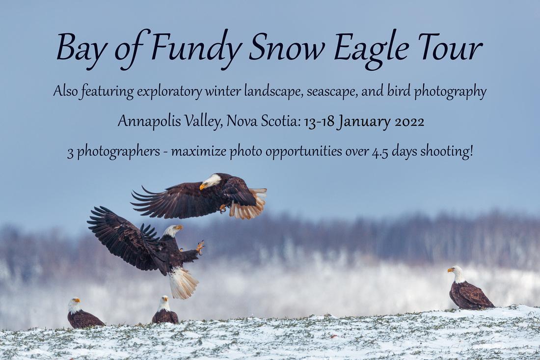 2022 Snow Eagle Tour 1, 13-18 January 2022